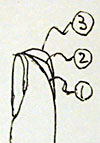 20091108_01